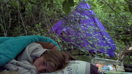 We Slept in the Trees